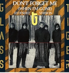 Don't Forget Me (When I'm Gone)