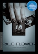 Pale Flower [Blu-ray] - The Criterion Collection