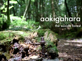 Aokigahara: Suicide Forest